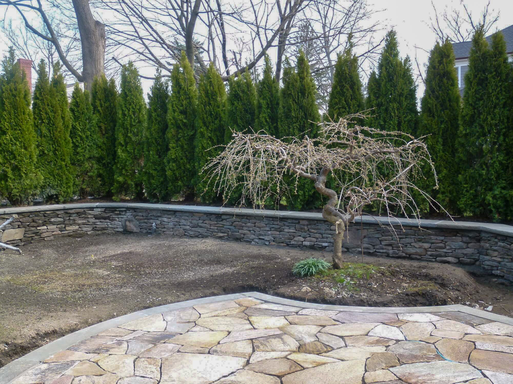 Camilla-Landscape-Patio-Progress