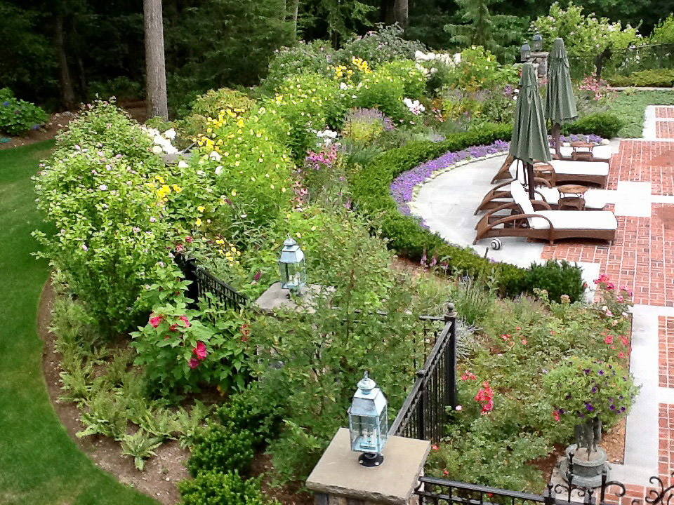 Camila-Landscape-Design-portfolio-plantings-2