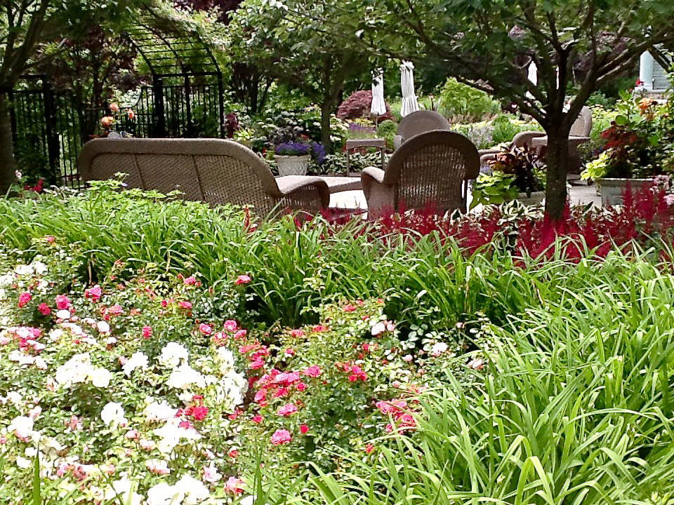 Camila-Landscape-Design-portfolio-plantings